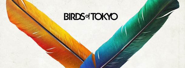 birds of tokyo - photo #21