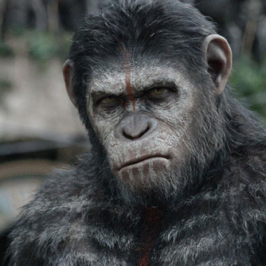 dawn-of-the-planet-of-the-apes-review-banner